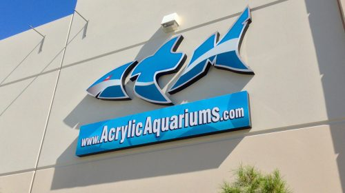 "See the Home Base of ""Tanked"" Acrylic Tank Manufacturing"