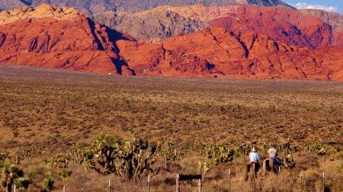 Cowboy Trail Rides – Las Vegas