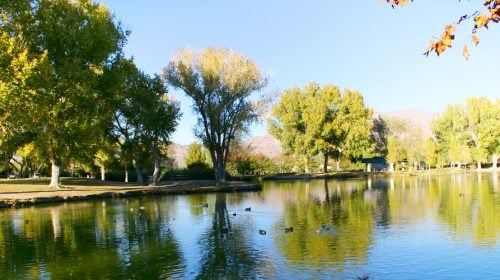 Visit the Beautiful, 2,000 Acre Floyd Lamb Park in Las Vegas