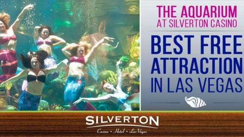 The Silverton Aquarium – Silverton Hotel & Casino