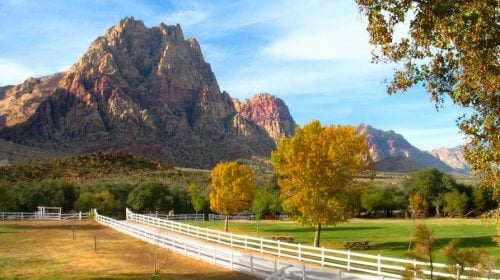 Don't Miss Spring Mountain Ranch in Las Vegas, NV!