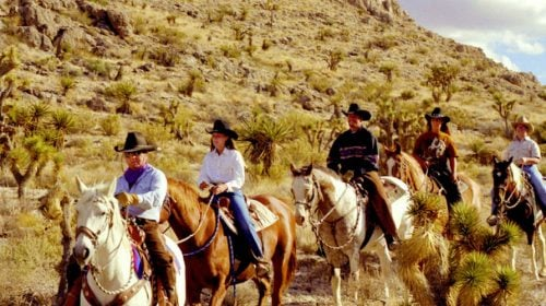 Wild West Horseback Adventures in Red Rock Canyon