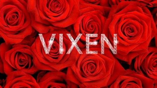 Las Vegas Vixen Bachelorette Party Package