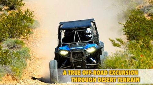 POLARIS RZR UTV TOUR