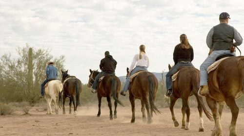 Rise Early with this Amazing Red Rock Canyon Horseback Riding Tour!